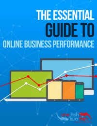 The Essential Guide to Online Business Performance